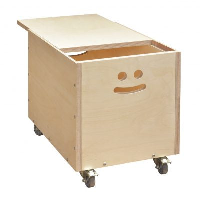 Quinn Storage Box-Localizedrsa -Enhance your RSA online shopping experience with localizedrsa, with 10 shopping departments to choose from!-Buy online in South Africa-www.localizedrsa.co.za