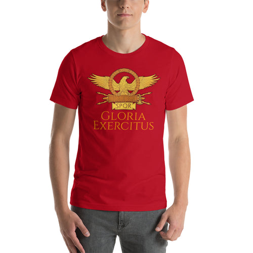 Ancient Rome tee shirt