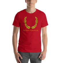 Load image into Gallery viewer, Ancient Roman mythology tee shirt