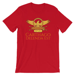 Ancient Rome clothing shirt