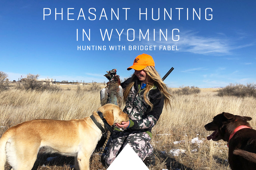 Pheasant Hunting in Wyoming