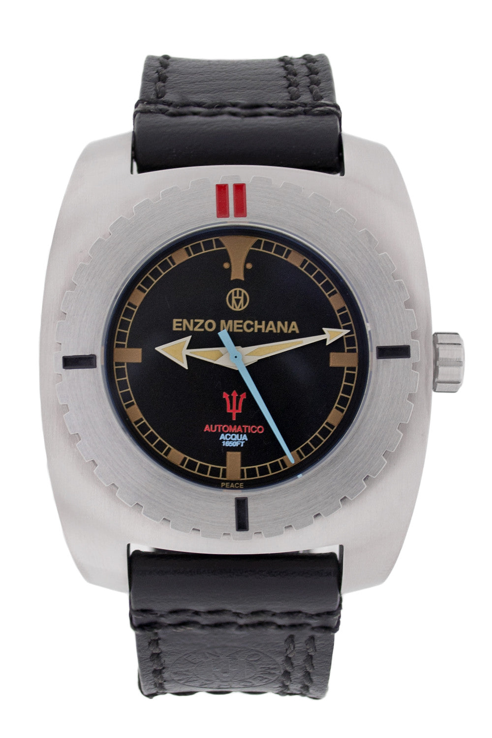 Enzo Mechana ACQUA 500m Automatic Watch - BLACK Dial