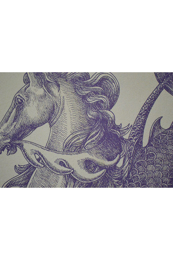 OMEGA HIPPOCAMPS SEAHORSE Quality Print - BLUE Ink