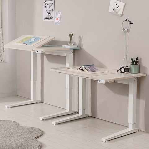 MYBLE FIT Up & Down Electrical Working Desk (accept pre-order)