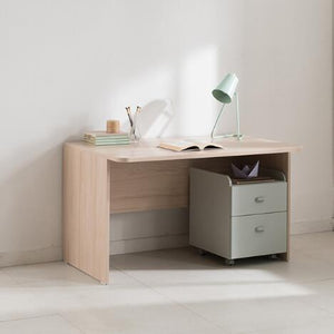 Ronan Normal Desk (accept pre-order)