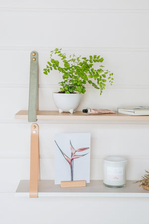 Suede Strap Shelf - Sage Suede/ Nordic Shelf (accept pre-order)