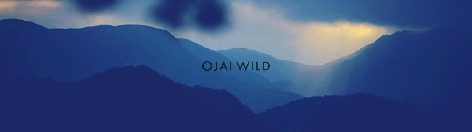 Ojai Wild Cologne & Fragances Inspired by & Crafted in California