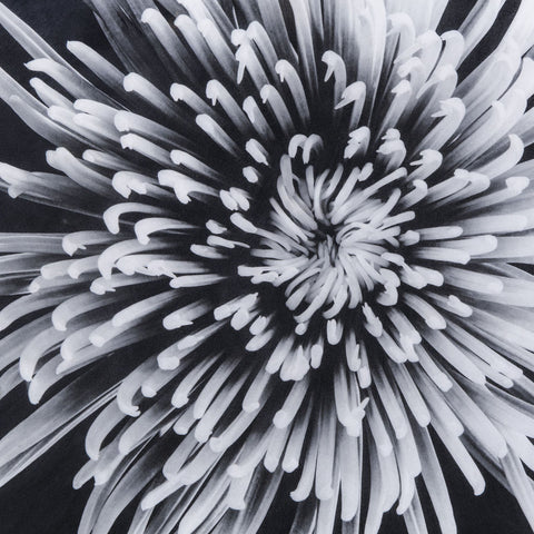 Resource Decor Black & White Flower | Epoxy / A