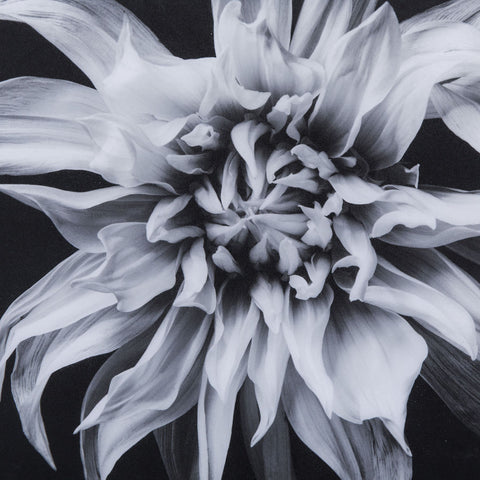 Resource Decor Black & White Flower | Epoxy F