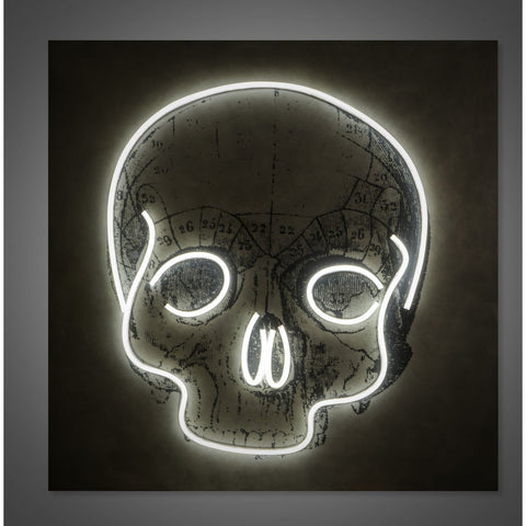 Resource Decor Led Neon Skull Light | Concrete