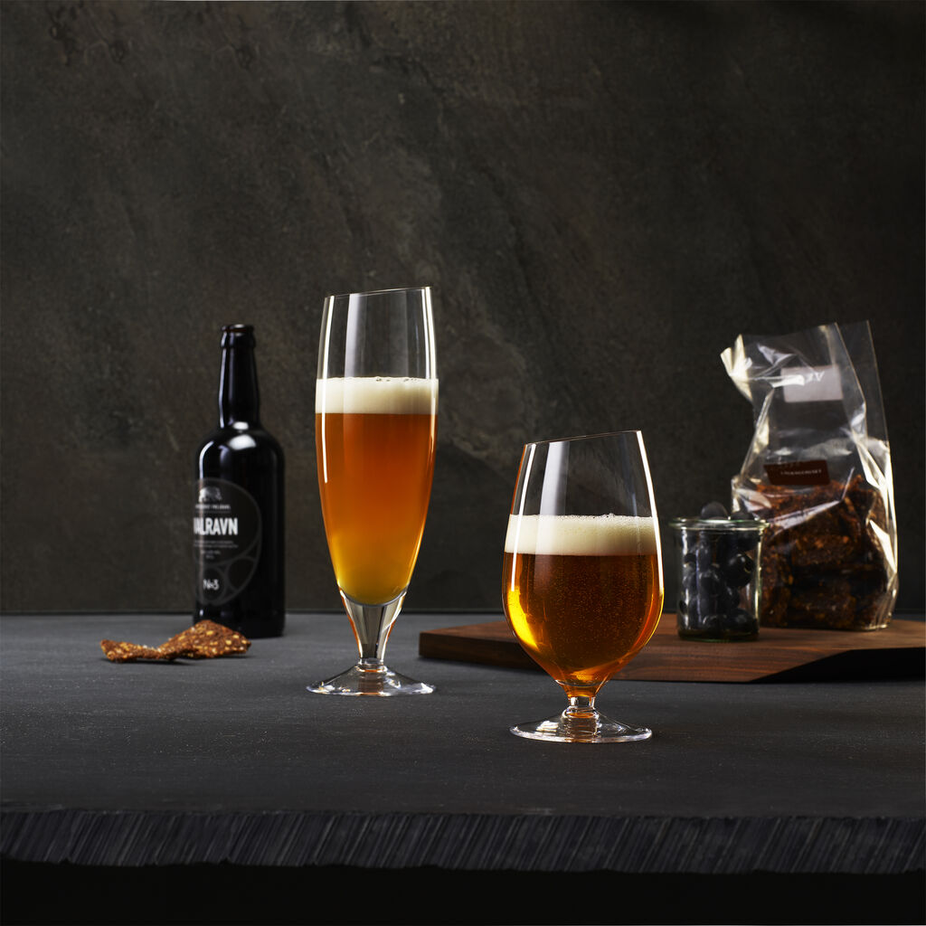 Eva Solo Beer Glass Set  --Small 541111