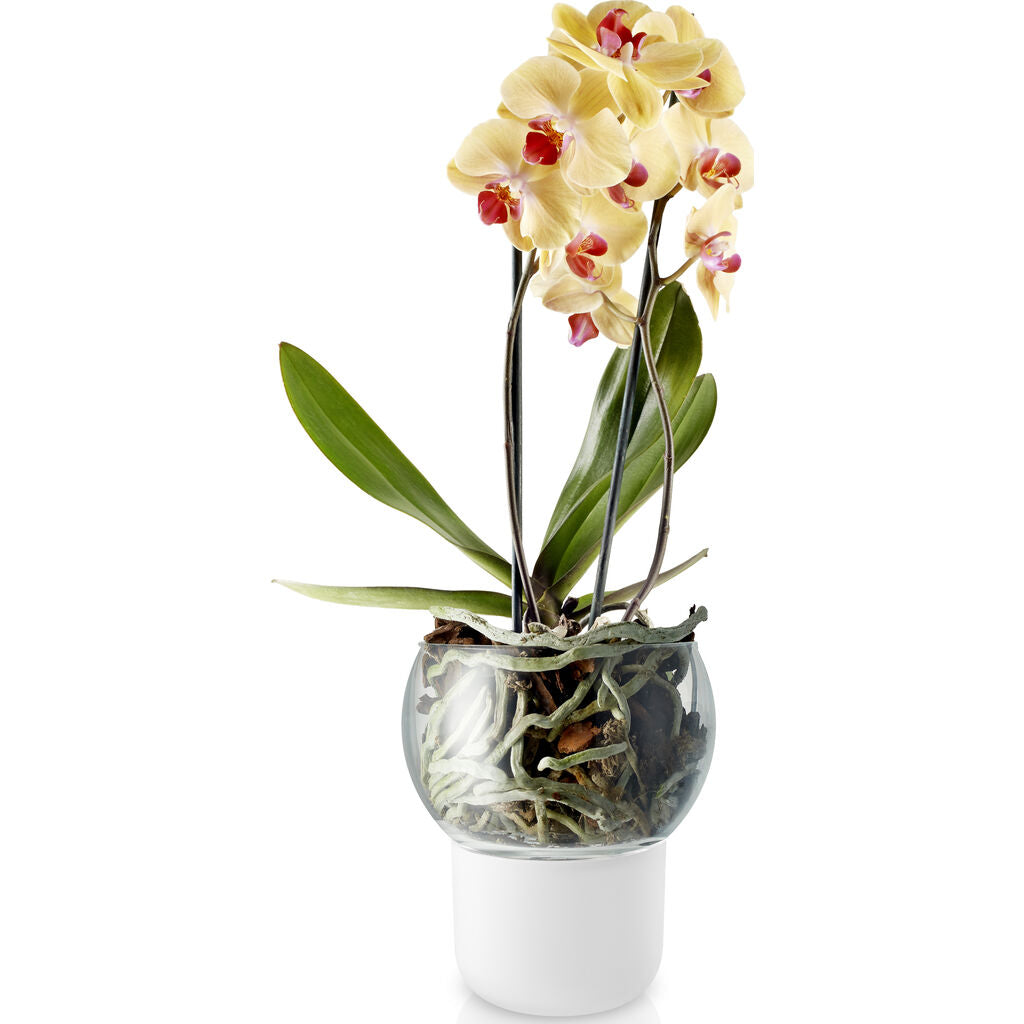 Eva Solo Selfwatering Orchid Pot | White --15cm 568149