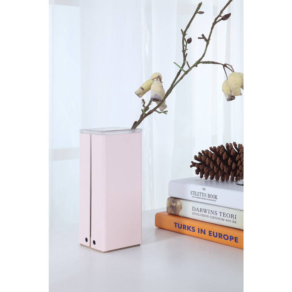 Camino Santa Container | Pink/Oak/Glass