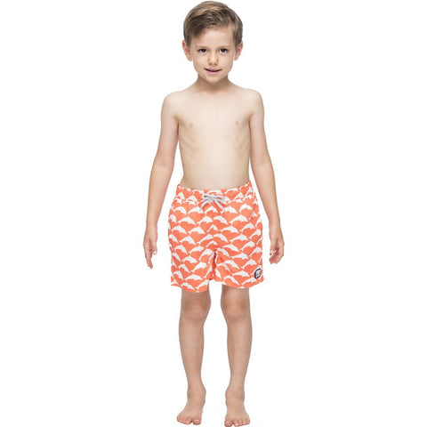 Tom & Teddy Dolphin Swim Trunk | Orange & White Size 5-6