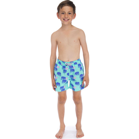 Tom & Teddy Boy's Elephant Swim Trunk | Spearmint & Blue / 11-12