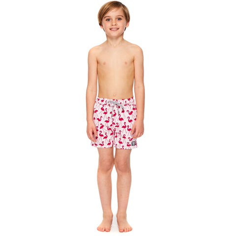 Tom & Teddy Boy's Flamingo Shorts | Pink & Red