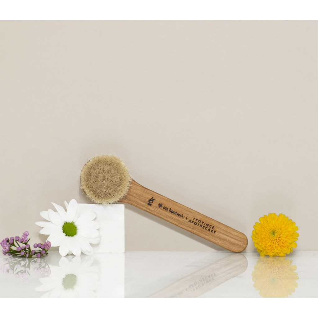 Province Apothecary Daily Glow Facial Dry Brush
