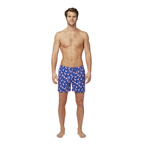 Tom & Teddy Men's Flamingo Contemporary Swim Trunk | Rose/Blue