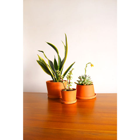 Michiko Shimada Terracotta Mini Planters Set of 3 | Terracotta