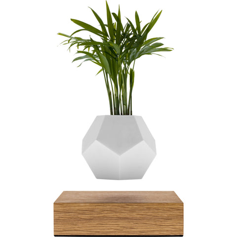 Flyte Lyfe Floating Planter | White FL-LYFE