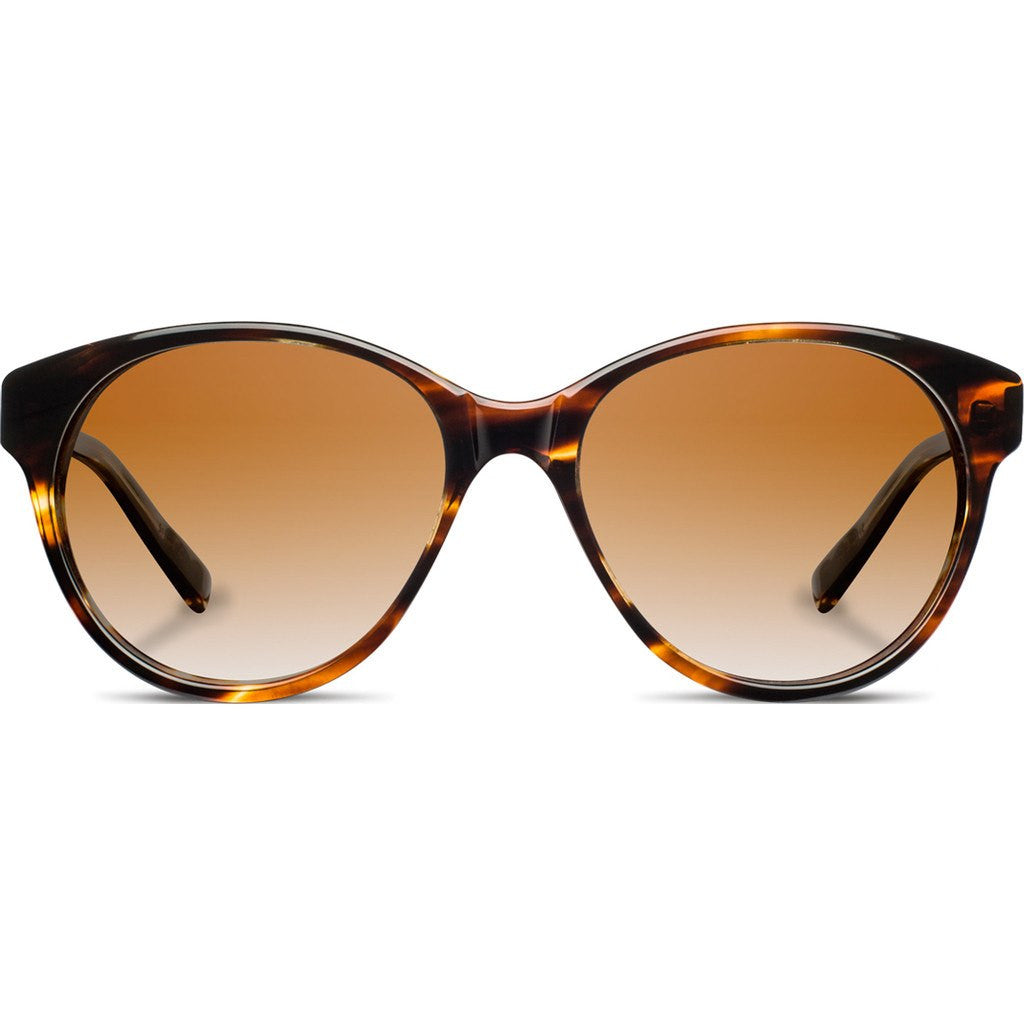 Shwood Madison Acetate Sunglasses | Tortoise & Ebony / Brown Fade Polarized WWAMTEBB2P