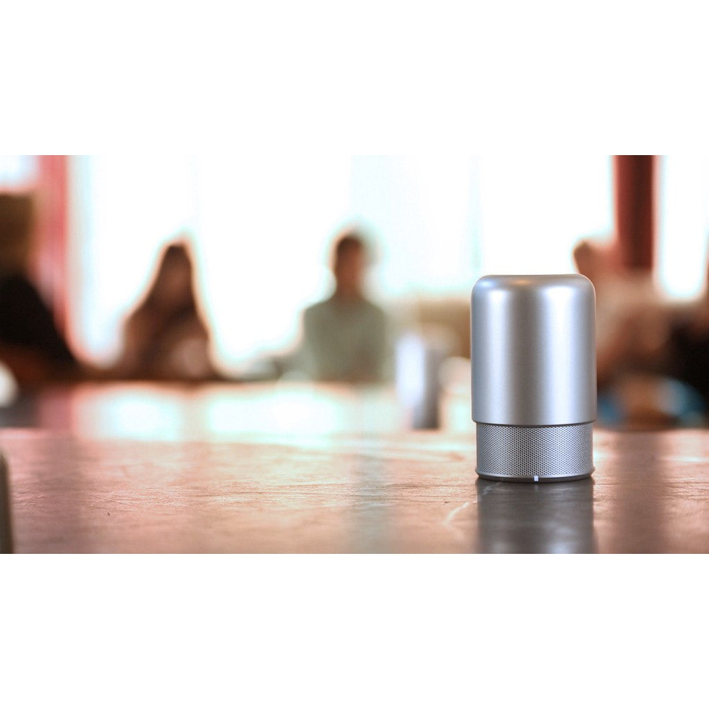 Hidden HiddenRadio2 Bluetooth Speaker | Platinum Silver