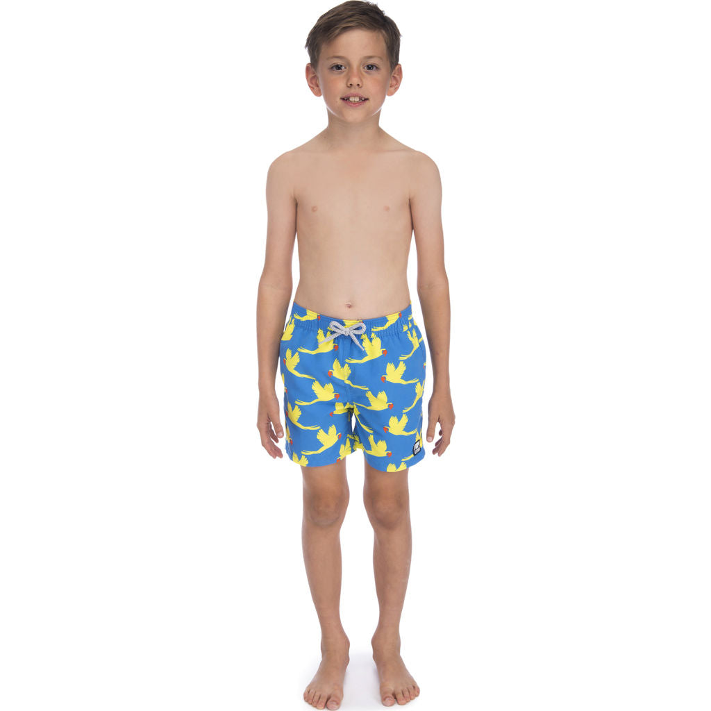 Tom & Teddy Boy's Parrots Swim Trunk | Mid Blue & Yellow / 9-10