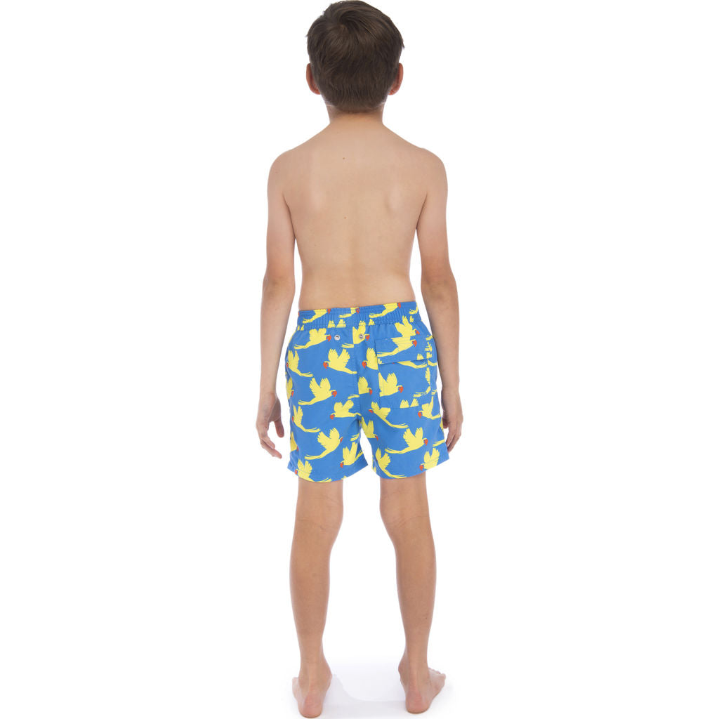 Tom & Teddy Boy's Parrots Swim Trunk | Mid Blue & Yellow / 1-2