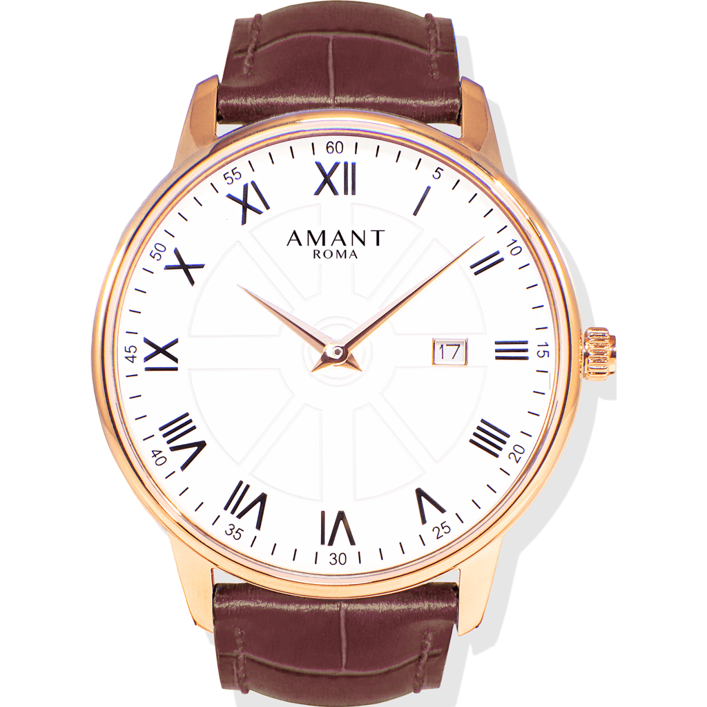 AMANT Roma Gold Watch | Sienna Brown