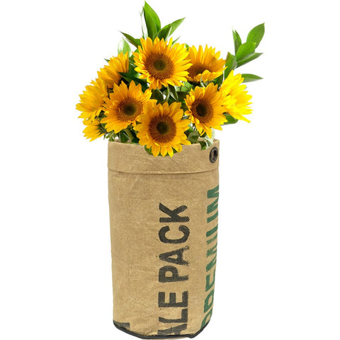 Urban Agriculture Organic Flower Grow Kit | Sunflower 10100