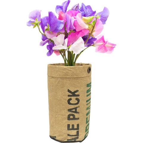 Urban Agriculture Organic Flower Grow Kit | Sweet Pea 10104