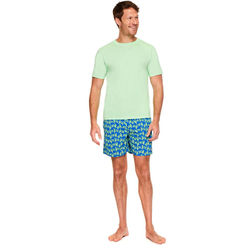 Tom & Teddy Men's T-Shirt | Pistachio