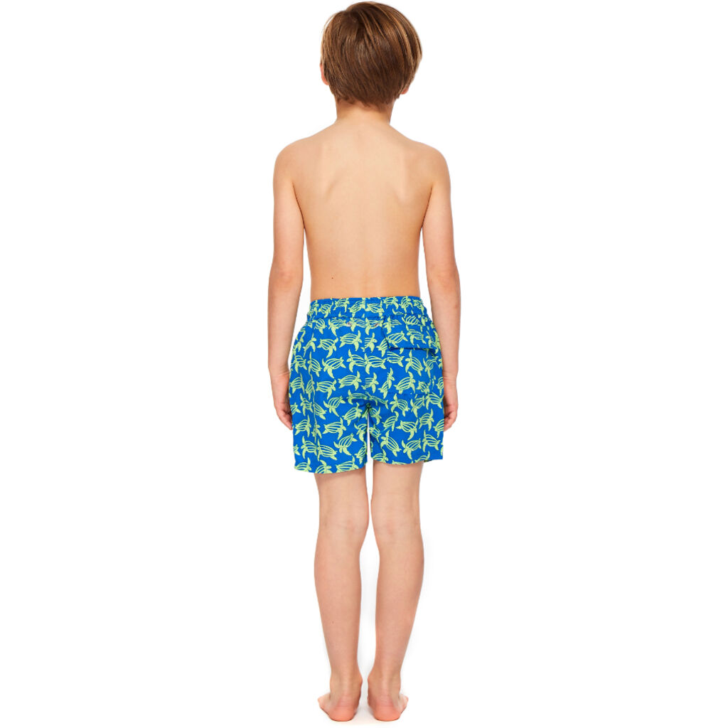 Tom & Teddy Boy's Turtle Shorts | Blue & Lime