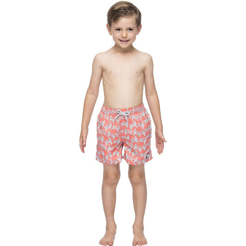 Tom & Teddy Turtle Swim Trunk | Rose & Blue Size 5-6