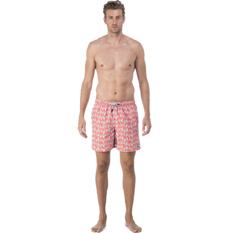 Tom & Teddy Turtle Swim Trunk | Rose & Blue Size M