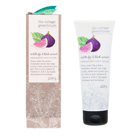 The Cottage Greenhouse Hand & Body Light Lotion | Violette Fig & Black Currant