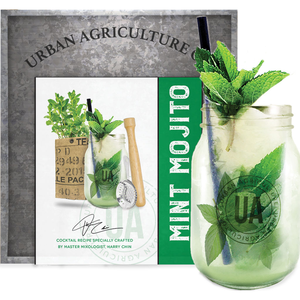 Urban Agriculture Grow Your Own Craft Cocktail Kit | Mint Mojito