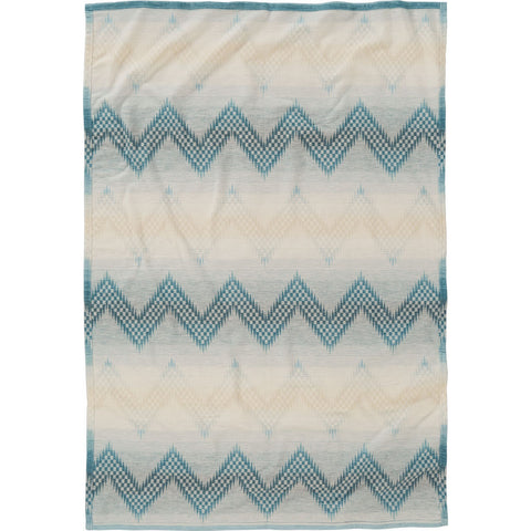 Pendleton Willow Basket Cotton Queen Bed Blanket | River- XA312 55100