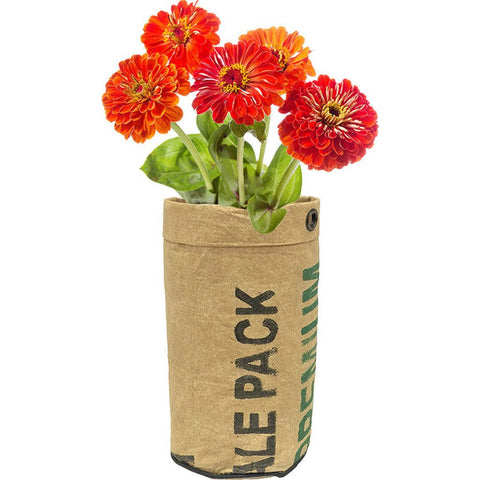 Urban Agriculture Organic Flower Grow Kit | Zinnia 10102