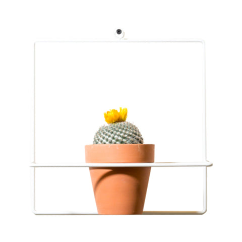 NewMade LA Square Wall Planter