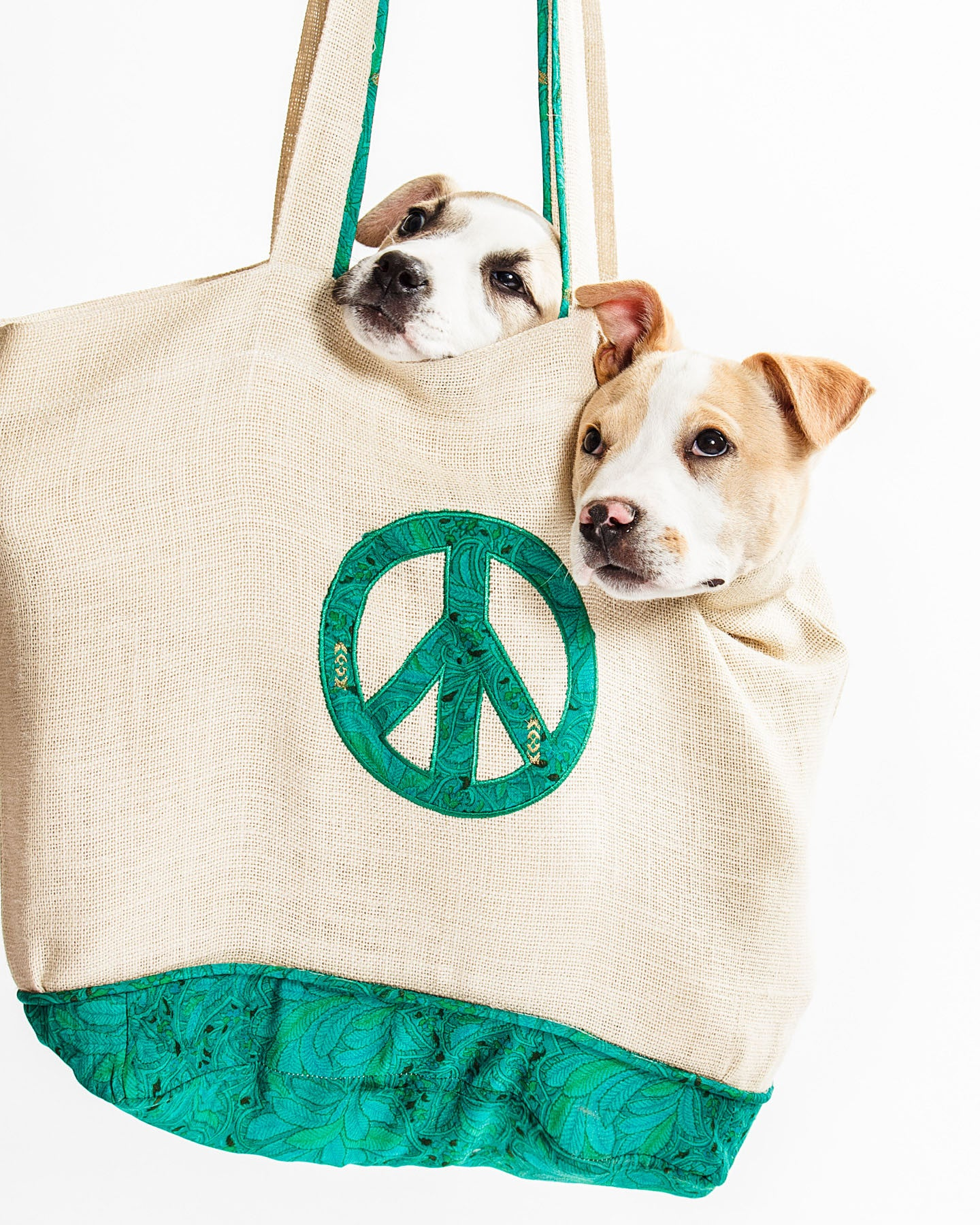 Puppies at peace in the Who's Sari Now? Peace Tote.