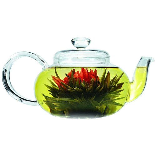 Stove-top Safe Brosilicate Glass Teapot 22 Oz with Infuser