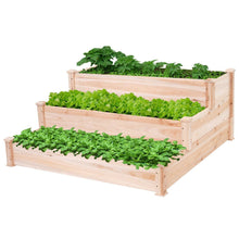 Load image into Gallery viewer, Solid Wood 4 Ft x 4 Ft Raised Garden Bed Planter 3-Tier