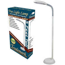 Load image into Gallery viewer, 5-Foot Contemporary Floor Lamp with Energy Efficient Light Bulb