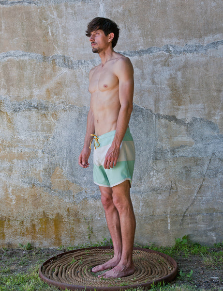 French Twill Board Shorts