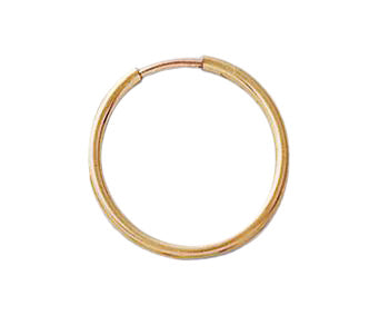 Gold Filled Dainty Hoop Earrings