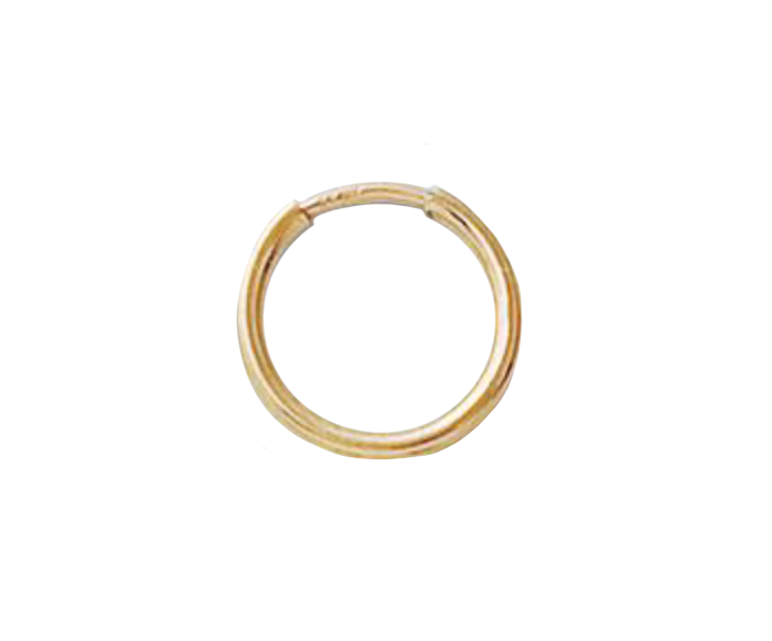 Gold Filled Tiny Hoop Earring