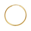 Gold-Filled Endless Hoops