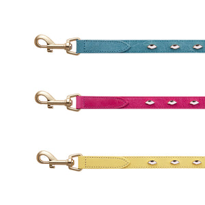 Eye rolling  leather pet leashes