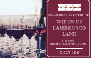 Copia del Wines of Lambrusco Land - Enogastronomic Experience